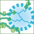 "<div><a href=""https://puc.overheid.nl/rijkswaterstaat/doc/PUC_632626_31/1/""target=""_blank"">Ecologische systeemopgave rivieren</a></div>"
